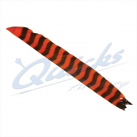Bearpaw Full Length (8-11 inch) Barred Feathers Left Wing Orange (each) : SORRY OUT OF STOCK : BF30FeathersBF30OR