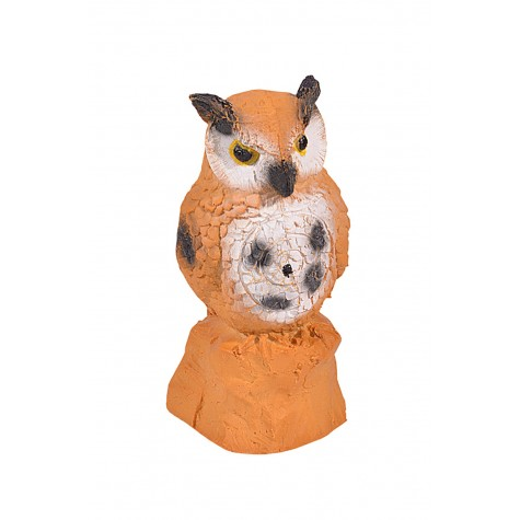 IBB Owl