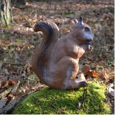 Longlife 3D Target Squirrel : BT89