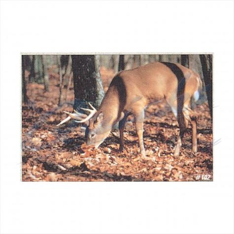 Delta Tru-Life Target Face Whitetail Deer No. 102 : DT03AnimalDT03