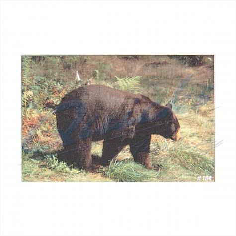 Delta Tru-Life Target Face Black Bear : DT04AnimalDT04