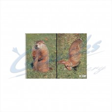 DT08 Delta Tru-Life Target Face Rabbit & Woodchuck (Single Face with both animals)