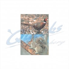 DT14 Delta Tru-Life Target Face Pheasant & Squirrel (Single Face with both animals)