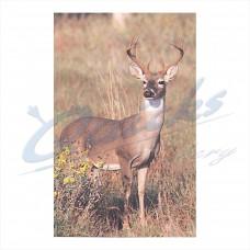 DT18 Delta Tru-Life Target Face Big Deer No.403