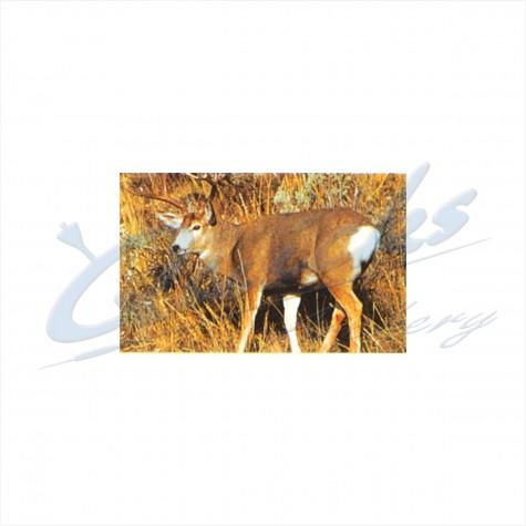 Delta Tru-Life Target Face Mule Deer : DT21AnimalDT21
