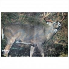 DT23 Delta Tru-Life Target Face Whitetail Deer No.203