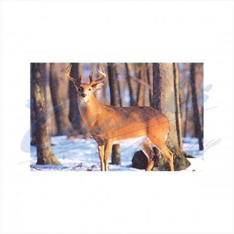 Delta Tru-Life Target Face Big Deer No.402 : DT25AnimalDT25