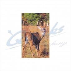 Delta Tru-Life Target Face Big Deer No.404 : DT26