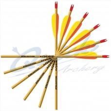 Easton Neos Beginners Alloy Arrows (set of 12) : ES01