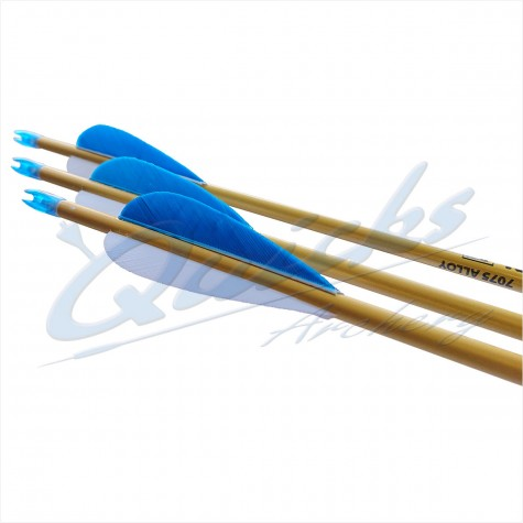 Easton Neos Beginners Alloy Arrows (set of 12) - Specifically made for Horseback Archery : ES01New ProductsES01H