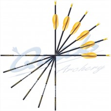 Carbon Arrows
