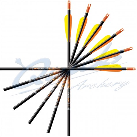 Easton  XX75  Arrows Complete : (Set of 8) : ES90