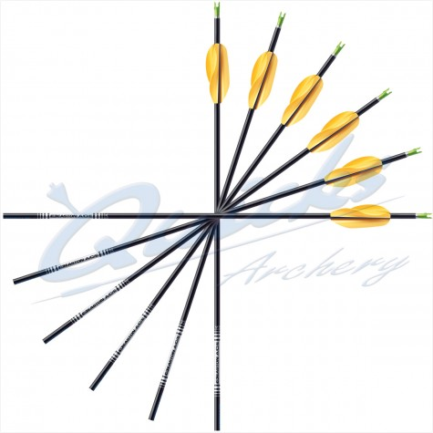 Easton ACE Arrows with Beiter Pin Nocks & EP51+EP52 Points (set of 12) : ES51Carbon ArrowsES51 3FL 12 B