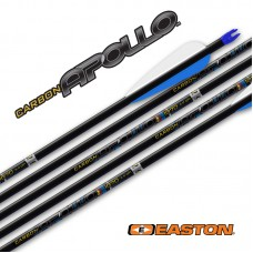 ES64 Easton Apollo Arrows with EN53 Nocks & EP64 Points (set of 12)