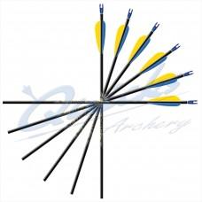 ES66 Easton Carbon One Arrows with EN53 G Nocks (set of 12)