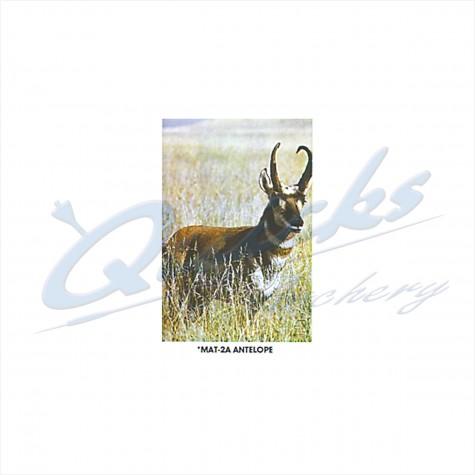 Martin Field Face : Antelope : MAT2AAnimalMAT2A