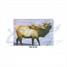 Martin Field Face : Elk : MAT2E