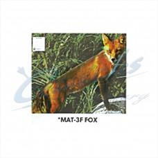 Martin Field Face : Fox : MAT3F
