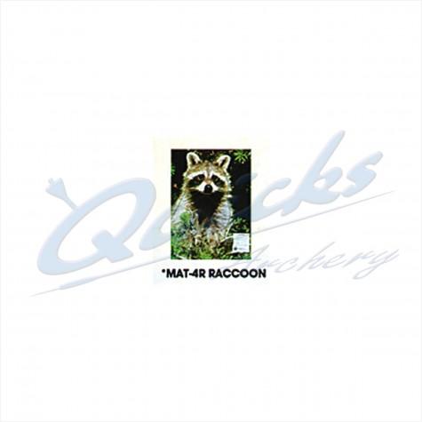 Martin Field Face : Raccoon : MAT4RAnimalMAT4R