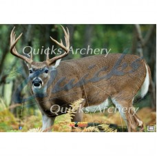 NT12 Deer Broadside Left Target Face 28 x 40 inches