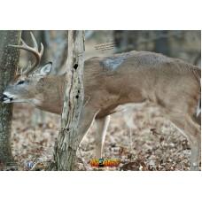 NT16 Deer Broadside Left Tree Target Face 28 x 40 inches