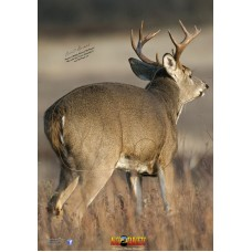 NT18 Deer Quartering Right Target Face 28 x 40 inches
