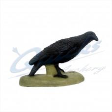 SRT Raven : ST30