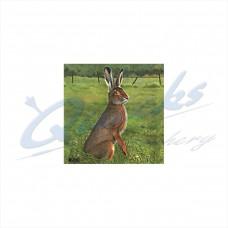 JVD Target Face Hare : VT29