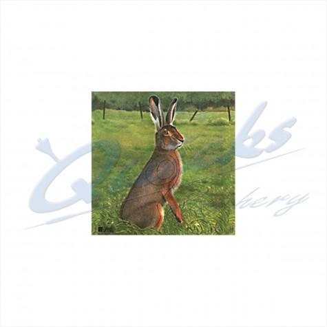 JVD Target Face Hare : VT29AnimalVT29