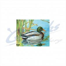 JVD Target Face Duck : VT30