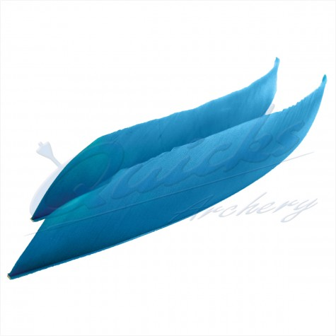 Trueflight Commercial Grade Feathers (each) : ZF45FeathersZF45