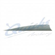 ZF62 Trueflight Shield Pattern Feather 5.5 Inch (per doz)